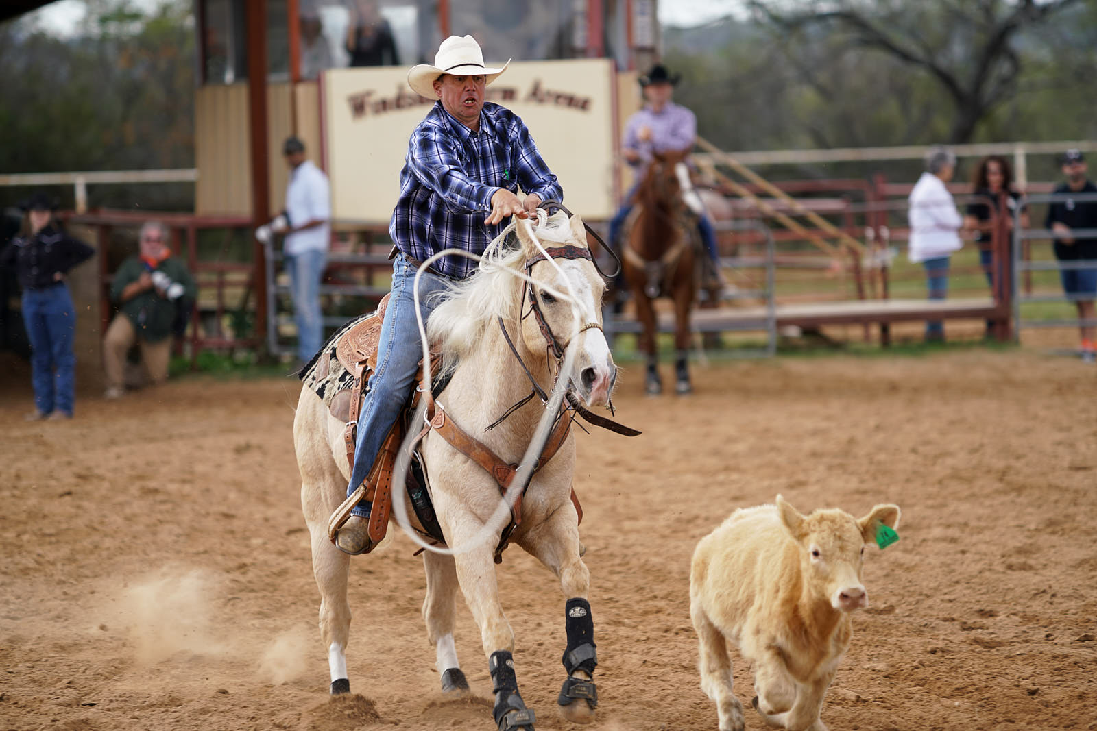 Sony a99 II review - Rodeo, steer roping