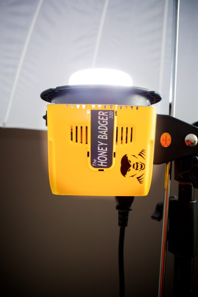 Interfit Honey Badger strobe